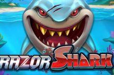 Играть в Razor Shark
