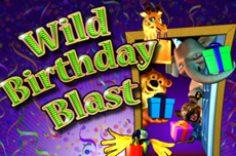 Играть в Wild Birthday Blast
