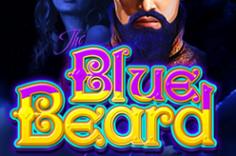 Играть в Blue Beard