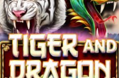 Играть в Tiger and Dragon