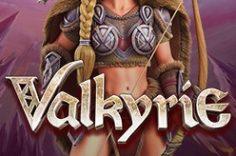 Играть в Valkyrie